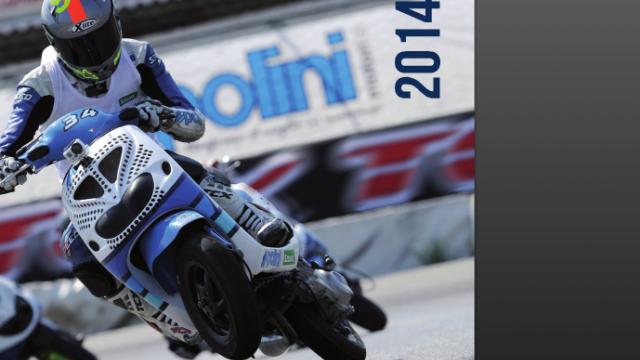 Polini 2014 Catalogue