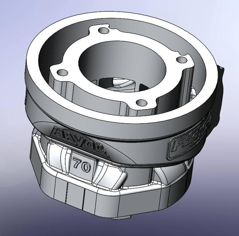 Roost Havoc 70cc Prototype
