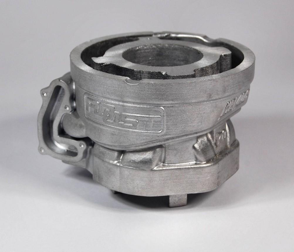 Roost Havoc 70cc Prototype 1